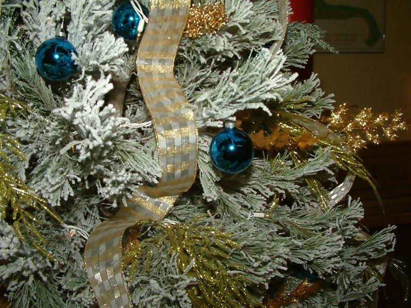 christmas 2005 lr (39)