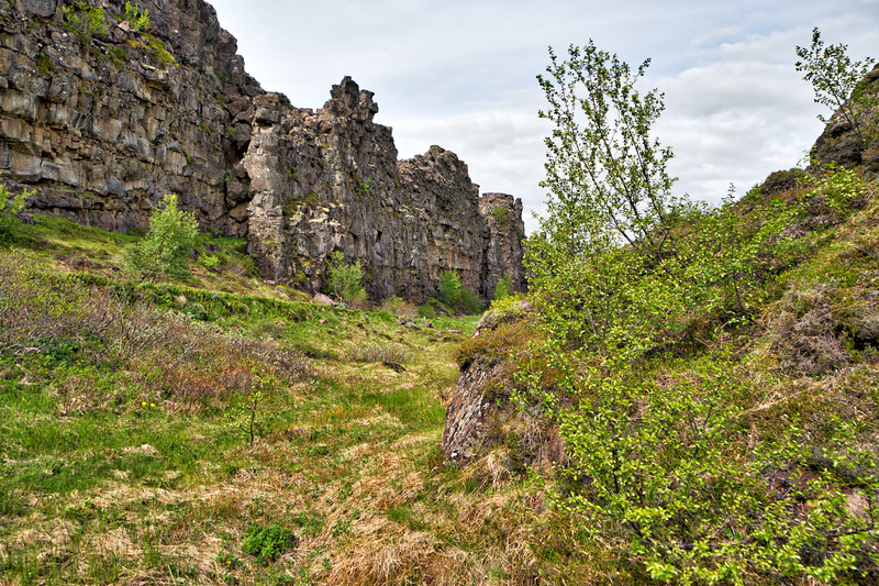 Iceland 2019-82.jpg