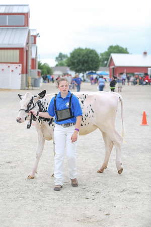 Dairy Show FREE to Download