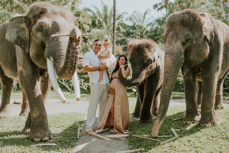 VTV_family_photoshoot_elephants_Bali_ (16).jpg
