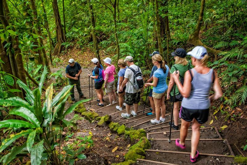 Costa Rica 2016 20160405-13-02-_MG_2645-006-Edit.jpg