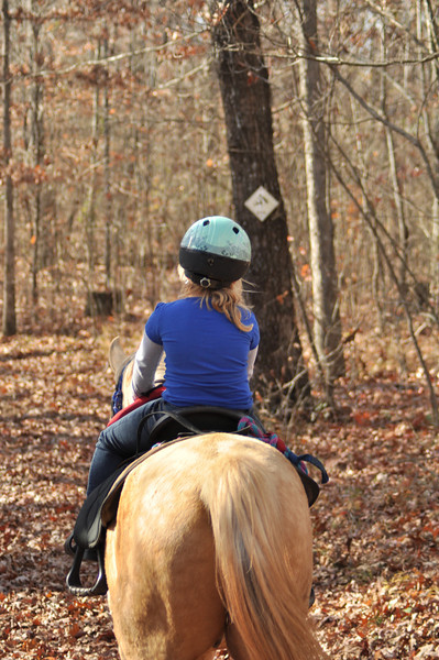 horse-riding-0032.jpg