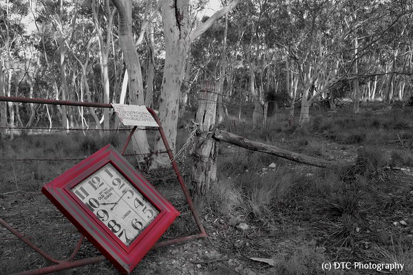 The Red Clock series
