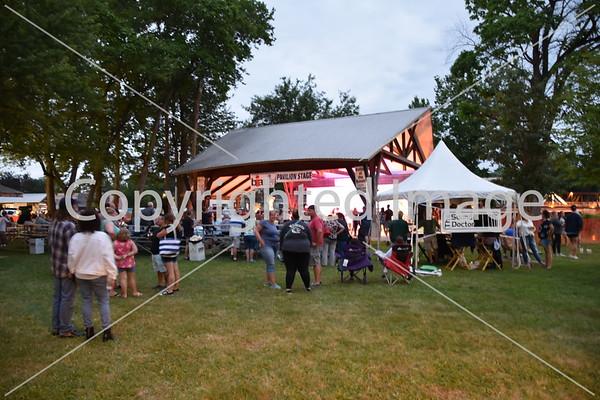 Blissfield River Raisin Festival 2021
