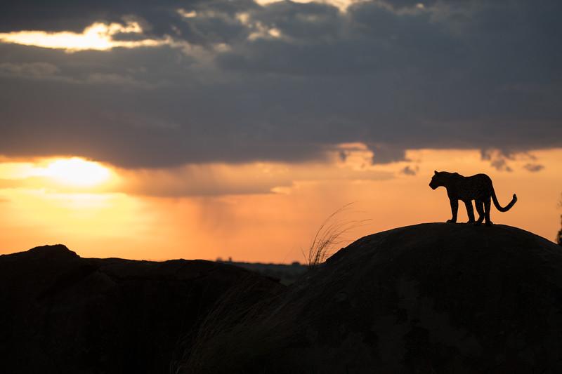 Africa  - 101016- 210-Edit.jpg