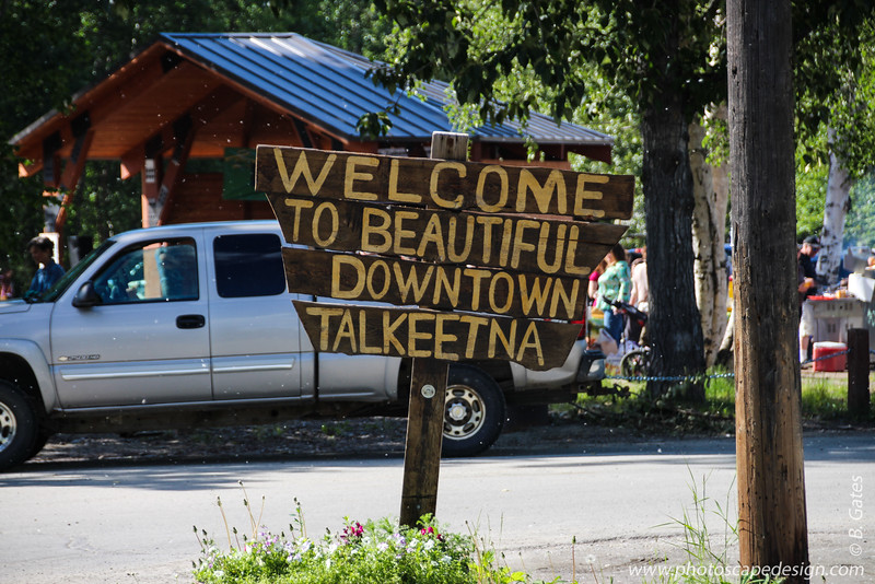 Talkeetna and Denali National Park
