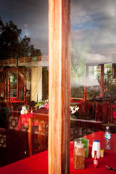 Catarina, morning reflections