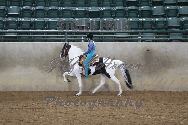 2019 MS 4H State Championship Horse Show