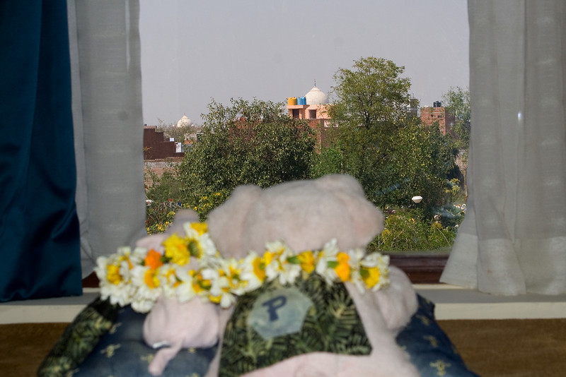 Percy and Diana See the Taj.jpg