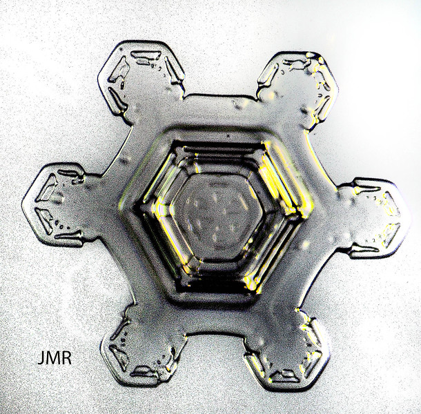 SNOW CRYSTAL GOLD GRAY .jpg