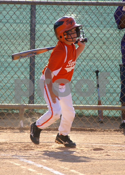 Talahi Tiger Baseball 2010