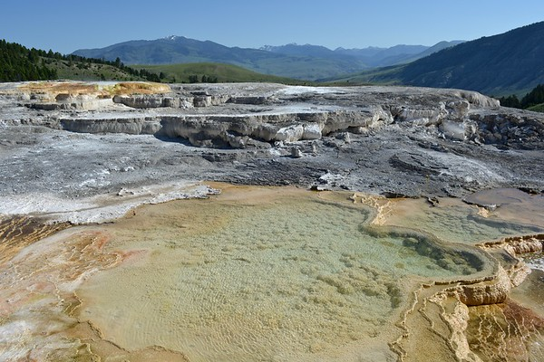 Mammoth Hot Springs Terraces in Yellowstone