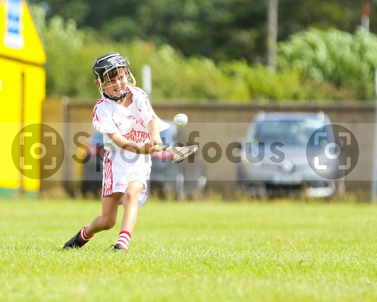 5th August 2019 North Tipperary Under 12 D Cup Final Borris-Ileigh vs Roscrea