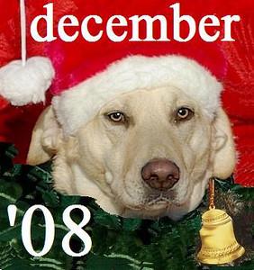 01 DECEMBER