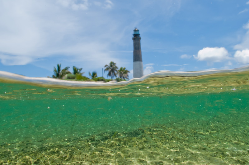 Loggerhead Key from the water