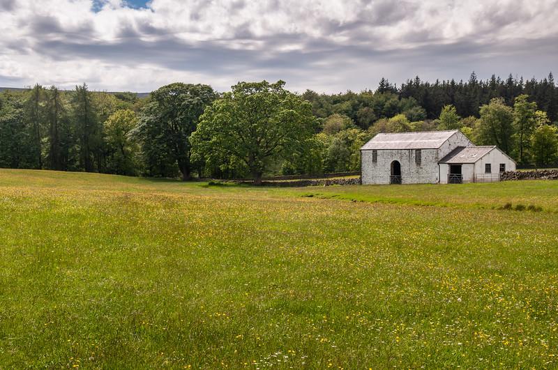 Teesdale farmland