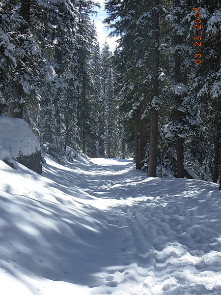 Back on the road to The Crags - with lots of snowshoe and ski tracks.