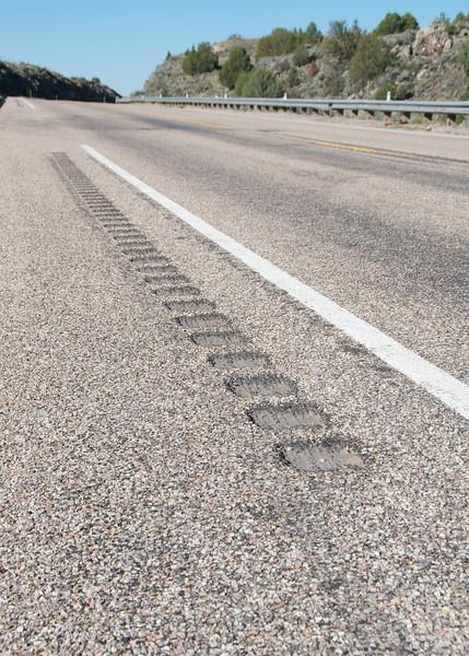 Highway 89 rumble strips