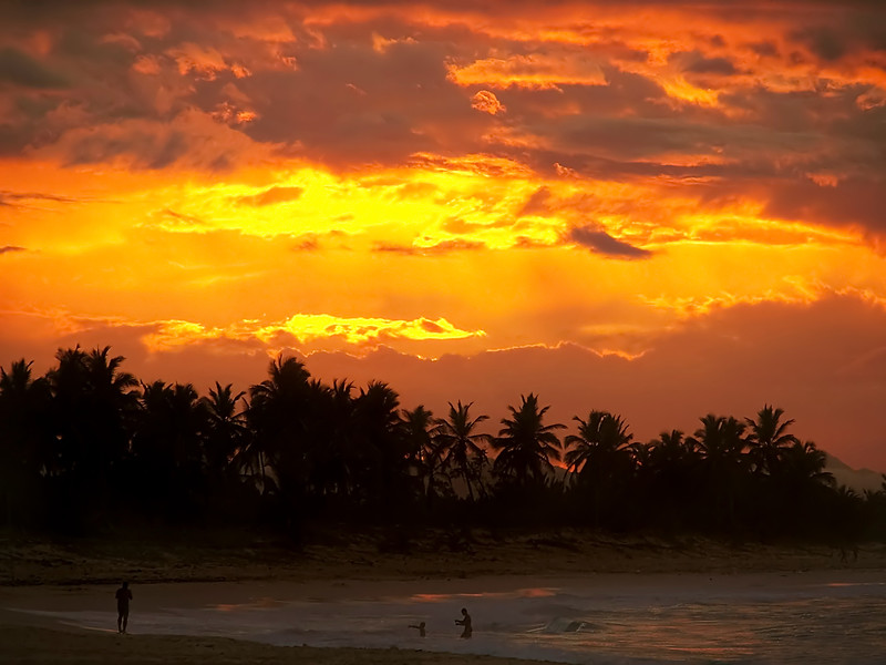 Beautiful photograph of a bright orange tropical sunset.