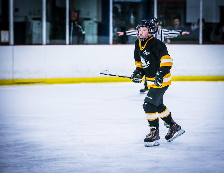 Bruins2-182.jpg
