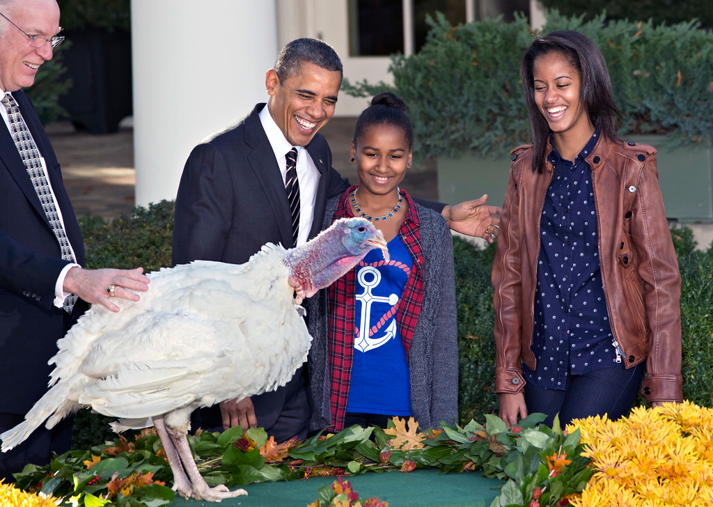 ". President Barack Obama, with daughters Sasha, center, and Malia, right, carries on the Thanksgiving tradition of saving a turkey from the dinner table with a ""presidential pardon\"" at the White House in Washington, Wednesday, Nov. 21, 2012.  After the ceremony, \""Cobbler\"" will head to George Washington\'s historic home in Virginia to be part of the \""Christmas at Mount Vernon\"" exhibition. National Turkey Federation Chairman Steve Willardsen watches at left. (AP Photo/J. Scott Applewhite)"
