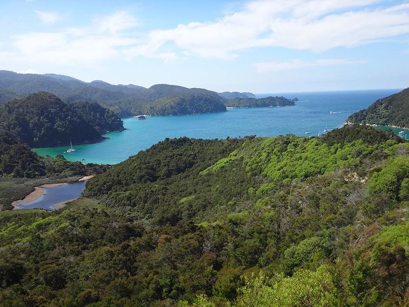 12 Torrent Bay.JPG