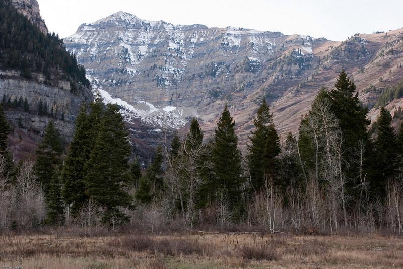 2006-11-05-Sundance-0027.jpg