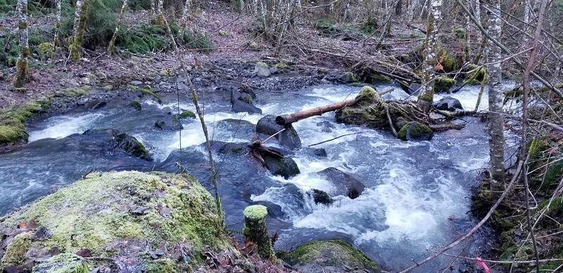 Third creek crossing along 54 road - Fish Creek