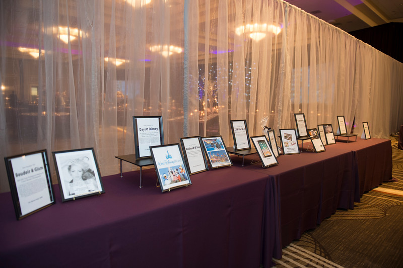 OVATION_SILENT_AUCTION - 004.jpg