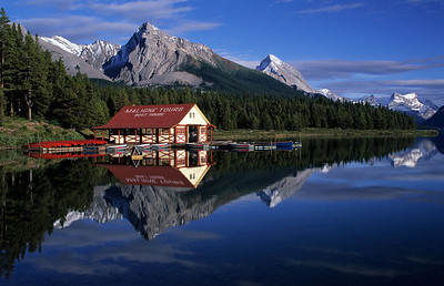 Nature's Reflections