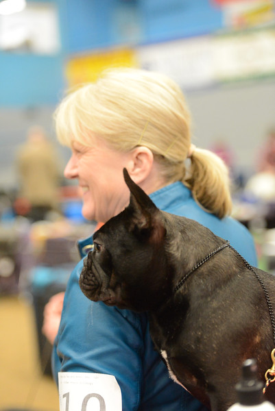 Olympic Dog Fanciers 5-6-18