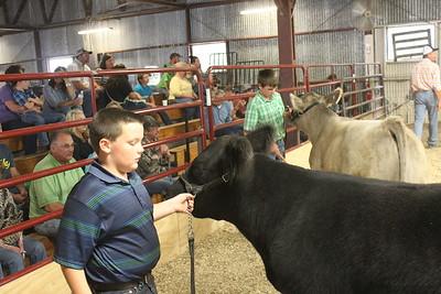 Nowata Fair livestock show since 2015