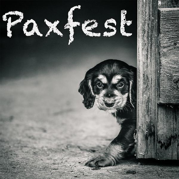 Paxfest.jpg