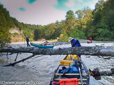 Cattaraugus Creek, New York. 2015