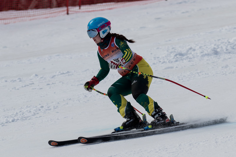 Men and Women Alpine Skiing