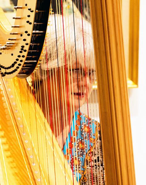Emily behind strings