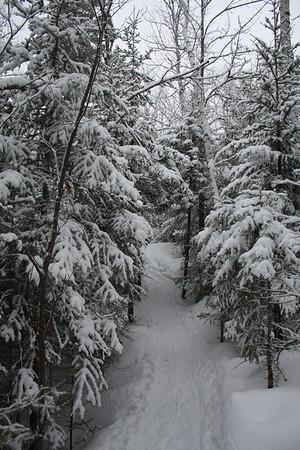 20-2-2013 Raquette au Saguenay, Jour 2 (Norvégien)