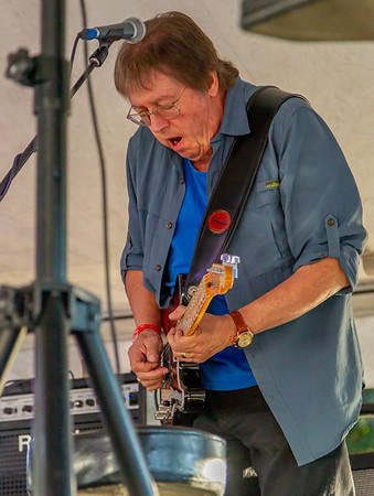Set three: Bill Brown and the King Bees at the Beer Garden, Festival Saturday 2018