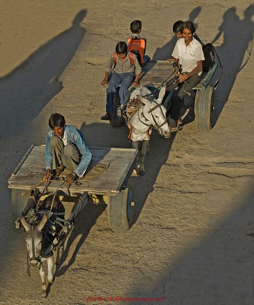India2010-0204A-445A.jpg