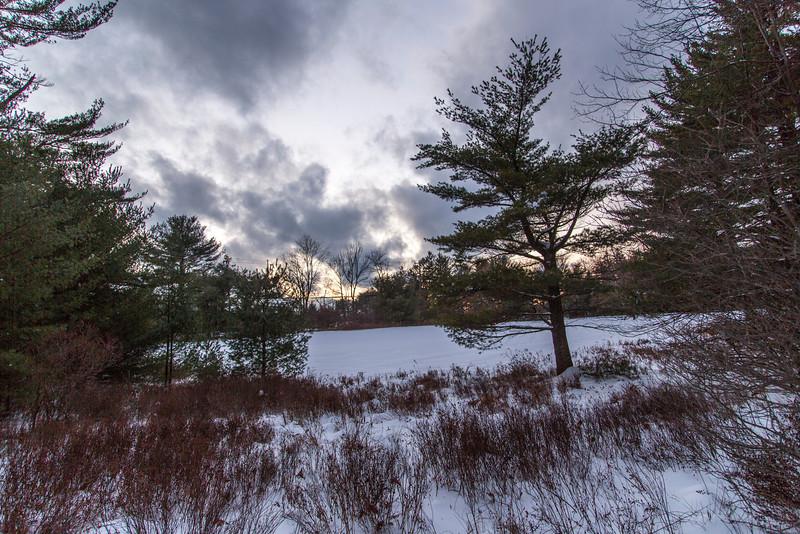 WinterScene-6868.jpg