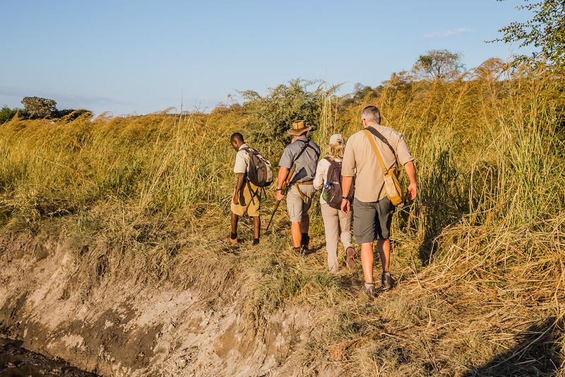 Walking safari in Zimbabwe - Best Safari Shirt