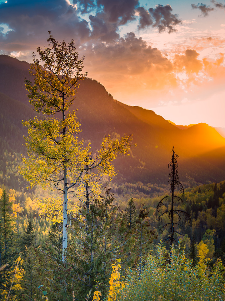 Backcountry Fernie, British Columbia, Canada