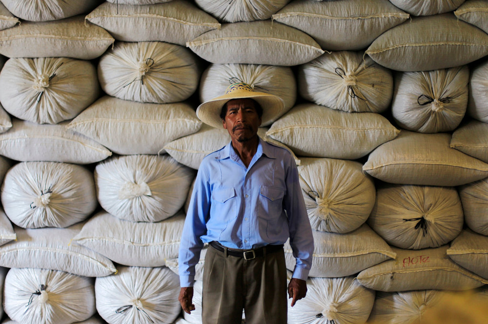 . Alberto Moya, 68, a member of the Santa Adelaida coffee cooperative poses for a picture at a warehouse of bourbon coffee for export in La Libertad, on the outskirts of San Salvador December 10, 2012. Once a family-owned coffee plantation split under a 1980 land reform, the Santa Adelaida coffee is now a cooperative dedicated to the production of organically-grown high ground coffee, which is certified by non-governmental organization Rainforest Alliance, and exported to Germany, the U.S., Britain and Japan. The coffee plantation is currently run by a cooperative of over 150 members. Picture taken December 10, 2012. REUTERS/Ulises Rodriguez