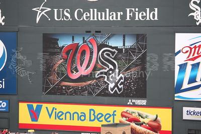 20110625 CHICAGO WHITE SOX vs WASHINGTON NATIONAL S