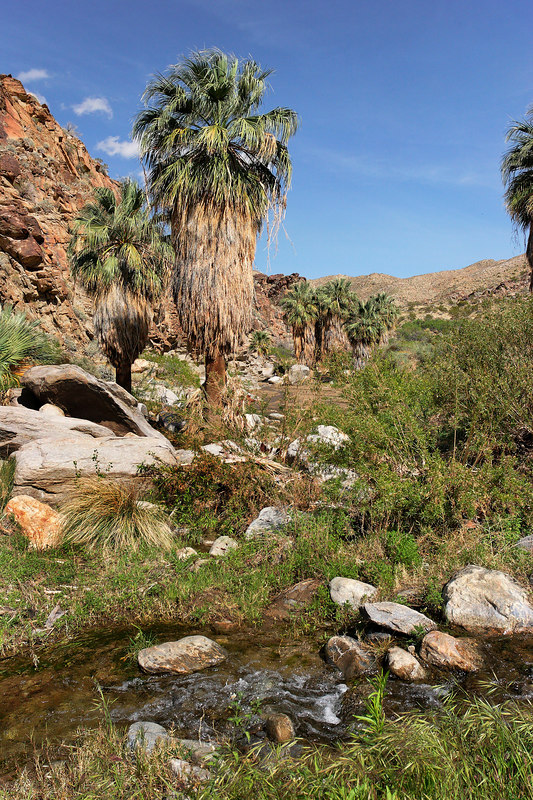 Agua Caliente Indian Reservation