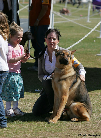 Scottsdale Dog Show 2007/Obediance/Random Candids