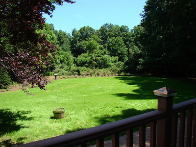 Landscaping 2009