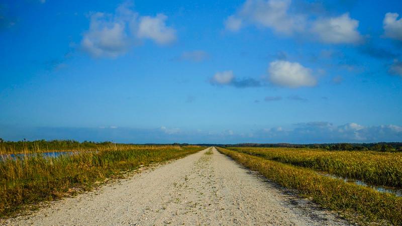 Arthur R. Marshall Loxahatchee National Wildlife Refuge (Joseph Forzano / The Palm Beach Post)