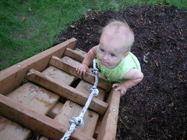 jessie rose ladder-2.jpg