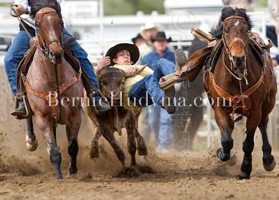 Steer Wrestling & Calf Roping